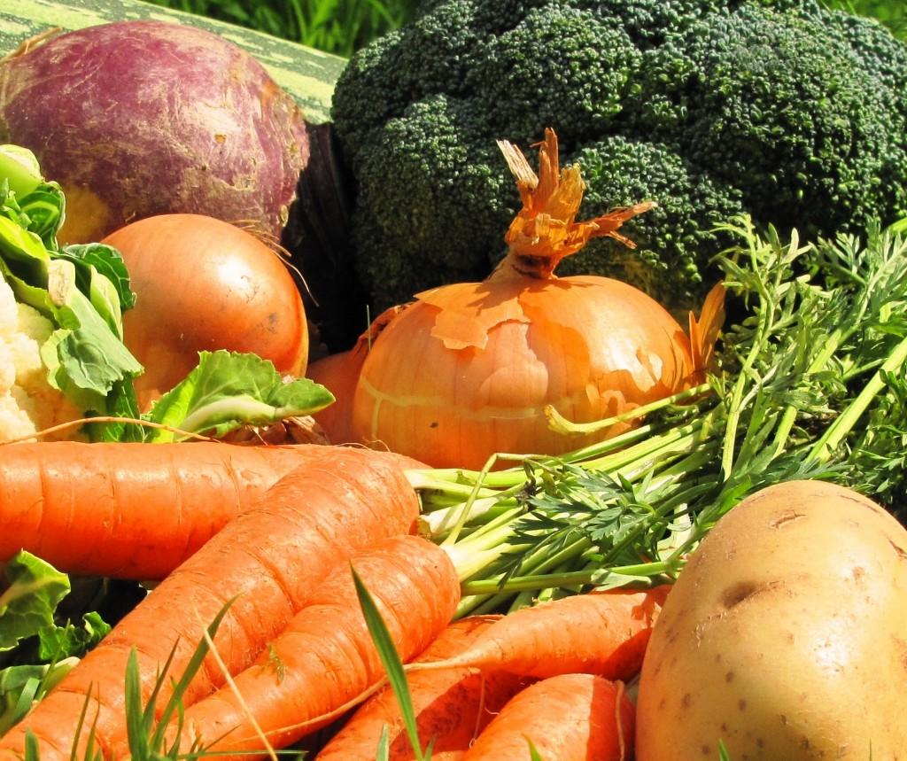 harvest veg